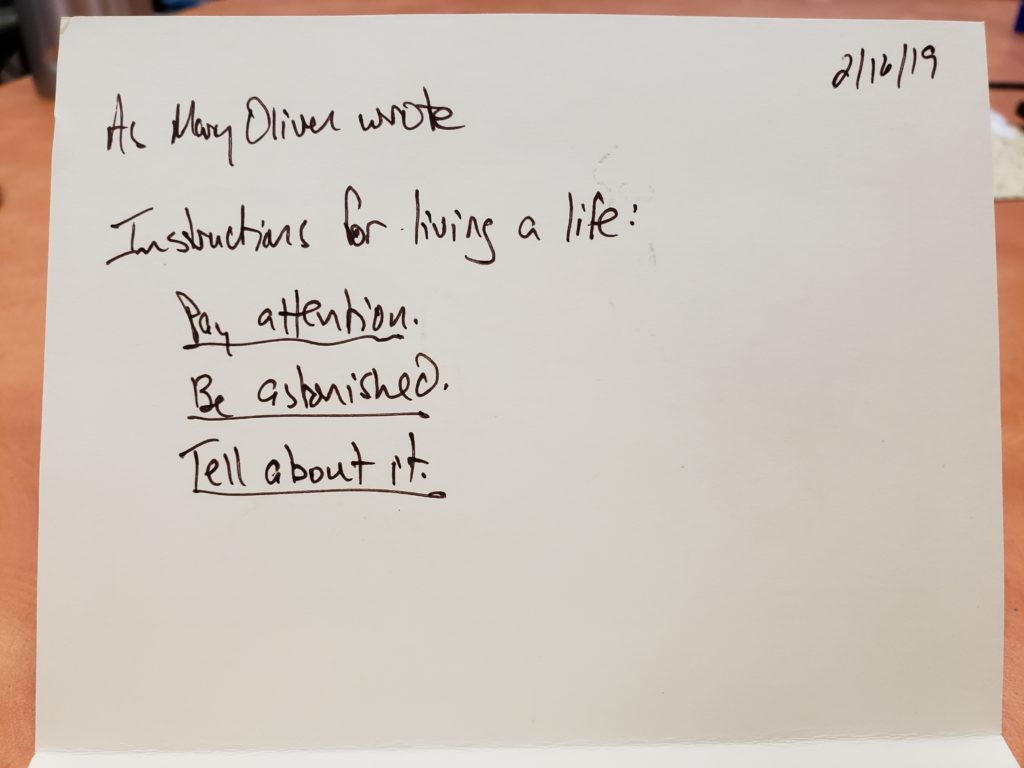 Hand written card. Text of card: As Mary Oliver wrote Instructions for living a life: Pay attention Be astonished Tell about it.